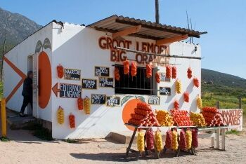 Fruit Stall on N7, north of Citrusdal on the way to Clanwilliam, Cape West Coast