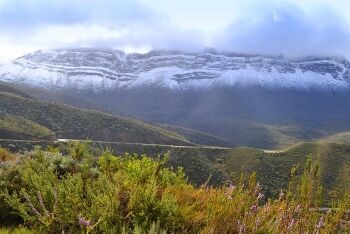 View from R303 between Ceres & Citrusdal, Cape West Coast, Western Cape